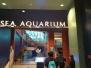 The Sea Aquarim & Museum 22 Jul 2016